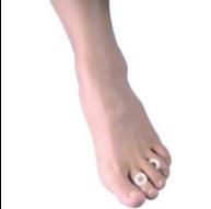 Anillo protector de silicón para pie